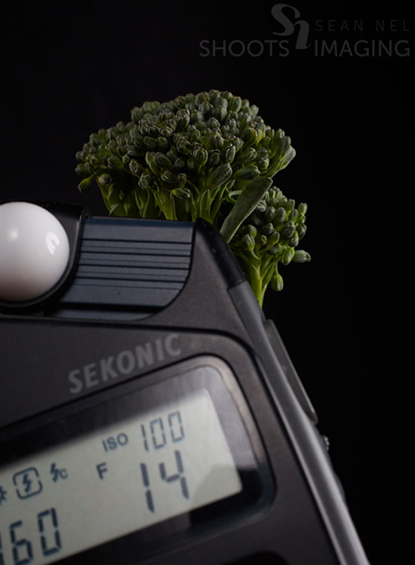 BTS-Broccoli-Lightmeter_03
