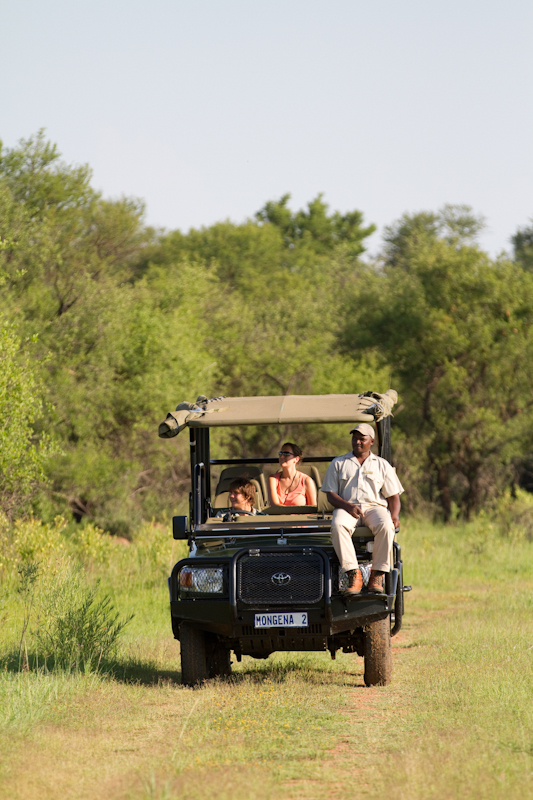 Driving in Dinokeng, Sabi Sands-style