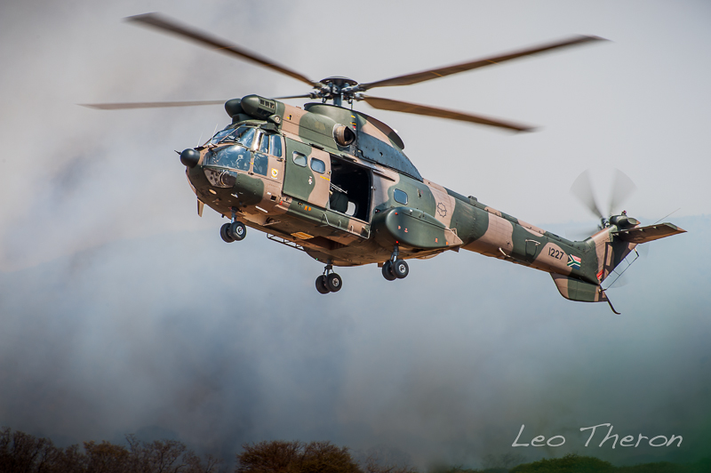 LeoTheron_NRM4898