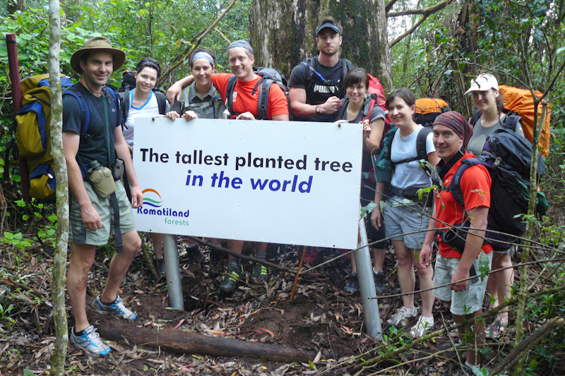 A group photo as the base of the tallest planted tree in the world.
