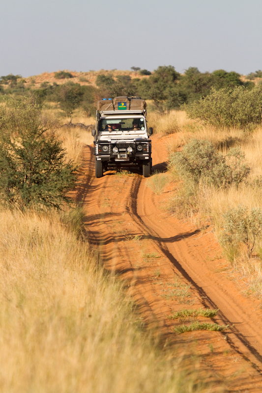 Give yourself at least nine hours to drive from Nossob Camp to Mabuasehube.