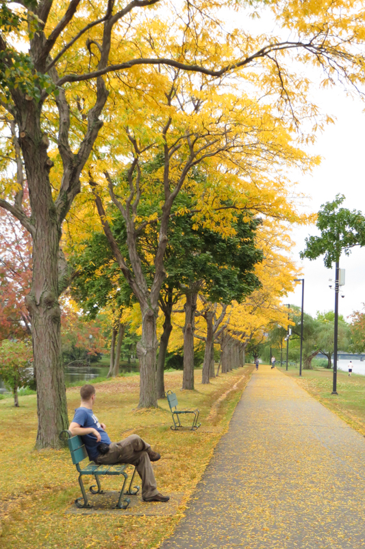 Boston is most colourful in October when the leaves turn yellow, orange and red.