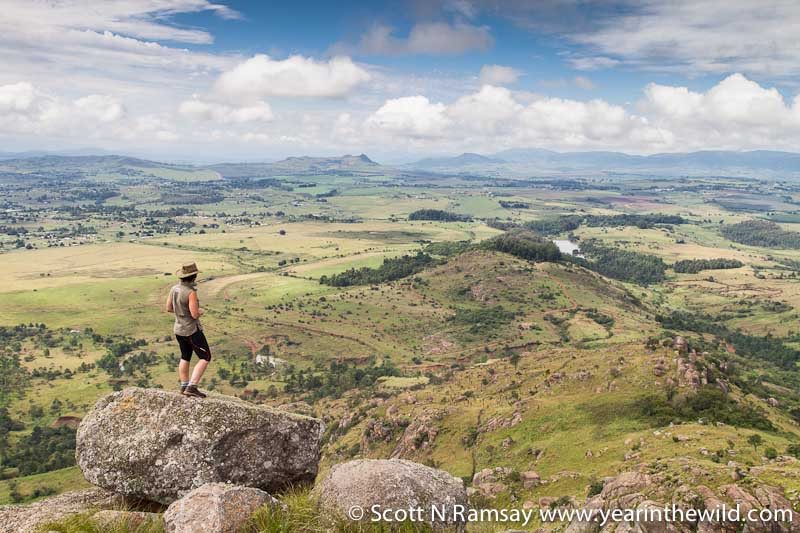 Ted Reilly and his family continue to actively lead conservation efforts in Swaziland. In this photo Ted's daughter Ann is looking out over Mlilwane from the top of Nyonyane Mountain