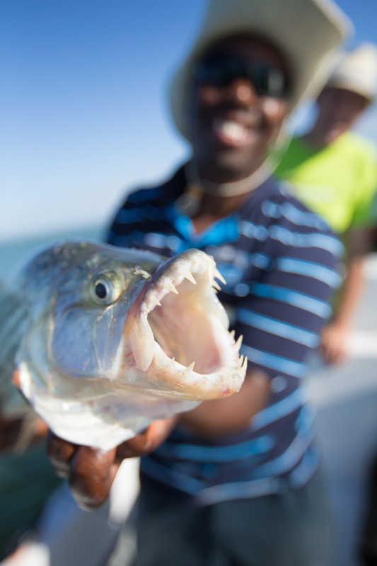 If you go at the right time of the year, you have a good chance to catch a tiger fish.